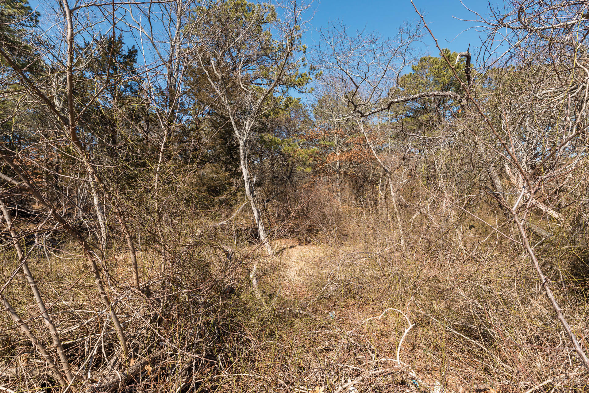 Additional photo for property listing at South Of The Highway Southampton  Southampton, New York